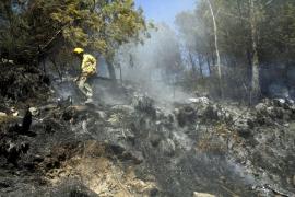 Piden 78 años por provocar 24 incendios en Mallorca y Menorca en 2012