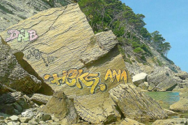 Indignación al aparecer tres grafitis en la paradisíaca zona de ses Pedres Planes