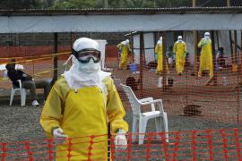 Zmapp, un rayo de esperanza muy débil todavía contra el ébola