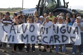 El Pla de Sant Jordi exige al Ajuntament que termine con la plaga de mosquitos