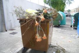 Emaya niega la privatización del servicio de eliminación de hierbas