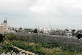 Cort reduce el número de viviendas y plazas de aparcamientos del Jonquet