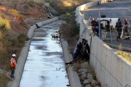 Muere el caballo de una galera tras quedar colgado en el torrente del Camí Fondo