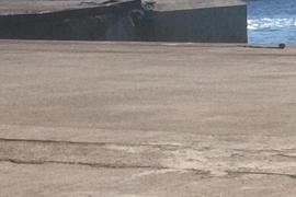 Suspendida la salida del ferry de Baleària al chocar contra un muelle en Alcúdia