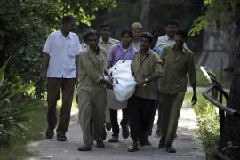 Un tigre albino mata a un joven en un zoo de Nueva Delhi