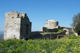 El castillo de Santueri de Felanitx registra un éxito de público tras su reapertura