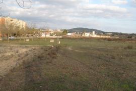 El pleno de Manacor desclasifica las zonas verdes del municipio