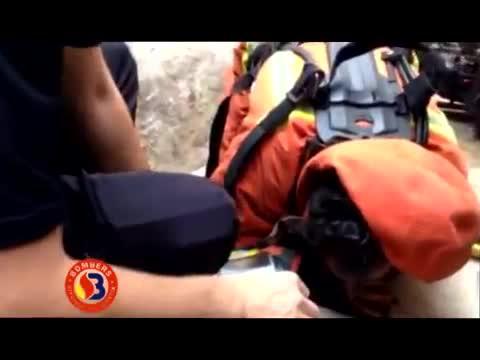 Bomberos de Valencia reaniman a un cachorro rescatado de un incendio