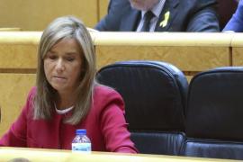 Mato defiende su gestión y dice que la oposición solo busca «arañar» votos