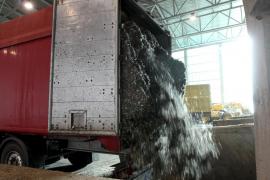 Balearia se queja ante la Autoridad Portuaria por el olor de los residuos que llegan al Port d'Alcúdia