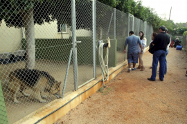 La Audiencia de Palma confirma que el Centro Canino debe pagar 68.500 euros a sus vecinos