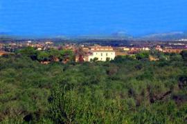 La justicia avala la construcción del campo de golf de Son Baco en Campos