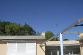 El GOB denunciará ante la Comisión Europea las fumigaciones aéreas