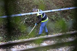 El cuerpo del niño de dos años hallado en una maleta presenta numerosas lesiones