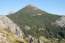 El Consell de Mallorca destinará 800.000 euros a la conservación de la Serra de Tramuntana