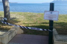 Cierran de forma preventiva la playa para mascotas de Pollença tras el envenenamiento de un perro