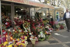 El IVA para flores y plantas  ornamentales pasa del 21% al 10%