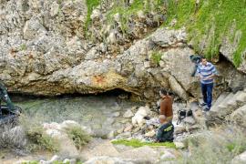 Aparece un tronco humano en una cala del Port d'Andratx
