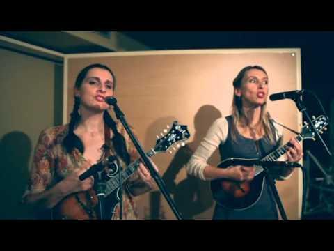 Pilgrims, dosis de bluegrass