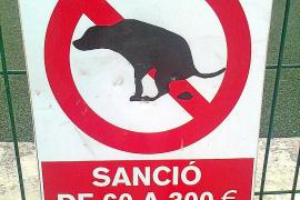 En Marratxí las multas por no retirar excrementos de perro se podrán conmutar barriendo la calle