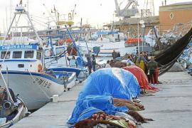 Detectan alto nivel de mercurio en los peces de las Islas