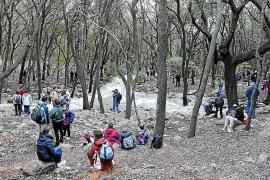 La alcaldesa de Campanet quiere reducir el número de visitantes a las Fonts Ufanes