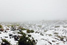 La primera nevada de la temporada llega a la Serra de Tramuntana