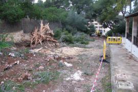 Empiezan las obras de apertura de la calle Llampuga, en Portocolom