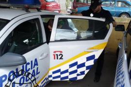 Arrestan al cabecilla de una banda que robaba en fincas de Manacor