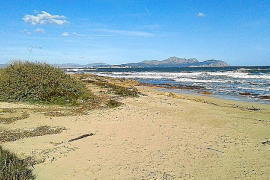 Santa Margalida contará con una playa para perros