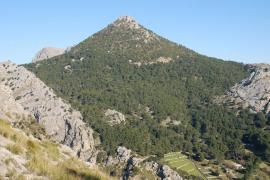 Aprobados 850.000 euros para la prevención de incendios en la Tramuntana