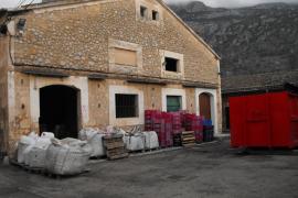 La Cooperativa Sant Bartomeu de Sóller repartirá 40.000 euros entre los productores de cítricos