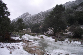 Reabierta la carretera entre Escorca y Fornalutx