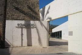 Un total de 527.897 personas visitaron Es Baluard durante el 2014