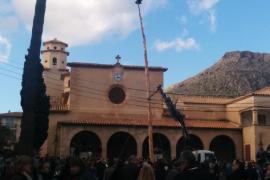 Eu Moll celebra el Pi de Sant Antoni