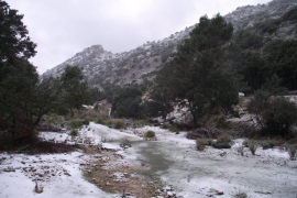 La primera ola de frío del año podría dejar nieve en Mallorca