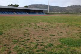 El PSOE denuncia el mal estado del césped del campo de la pista de atletismo de Magaluf