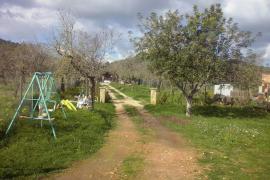 Residencia canina ilegal de Santa Eugènia