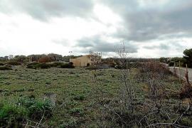 Los vecinos de la Colònia de Sant Pere podrán decidir sobre la ubicación del Punt Verd
