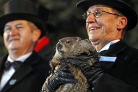 La marmota Phil pronostica seis semanas más de invierno
