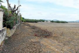 El Govern rechaza el proyecto de parque fotovoltaico de Santa Cirga en Manacor