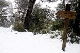 Mallorca, en alerta amarilla por nieve a los 300 metros y heladas