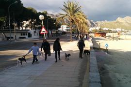 La reconversión de la primera línea del Port de Pollença no comenzará hasta noviembre