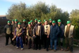Campaña del Ajuntament y la Sociedad de Cazadores de Santanyí contra la procesionaria