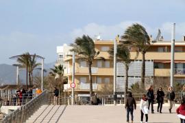 Mallorca en alerta por fuertes vientos
