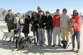 La Guardia Civil estrecha el cerco al 'asesino de perros' de Pollença