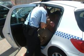 Dos detenidos por robo con fuerza en un domicilio de Cala Millor