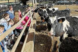 Imagen de los alumnos en la granja.