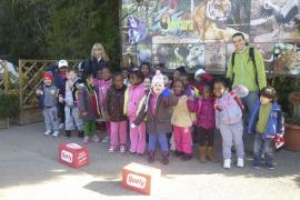 Alumnes d'Infantil del CEIP Inspector Joan Capó de Palma visitaren Natura Parc