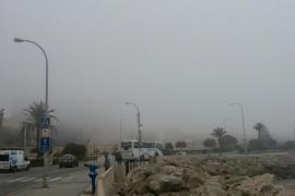 La niebla emblanquece Palma
